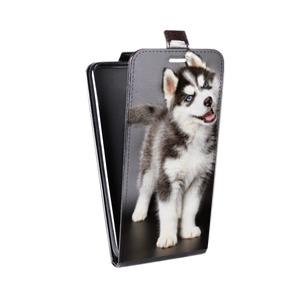 Дизайнерский вертикальный чехол-книжка для Samsung Galaxy J5 (2016) Животные